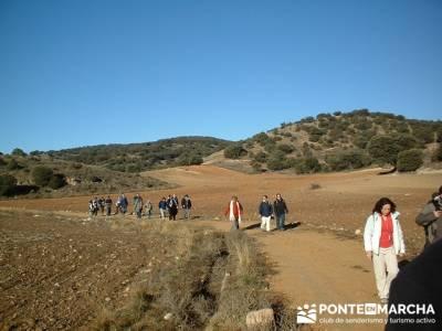 Cañón del Río Dulce y Sigüenza; grupos de trekking; madrid excursiones de un día